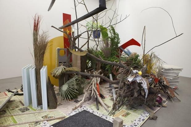 i-11-camille-henrot--robinson crusoe 2012 daniel defoe