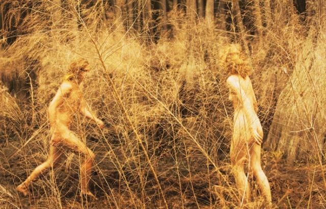 03-photographie-portrait-ryan-mcginley-barren-marsh_1