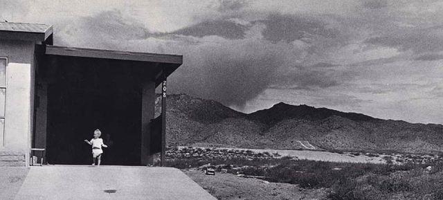 19576_adams-fiche-visite