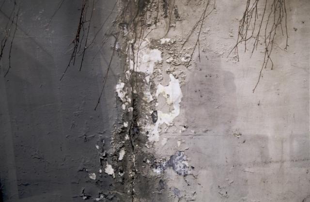 wall-4-li-184
