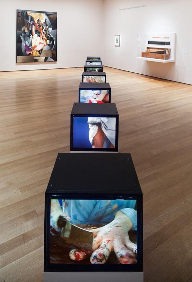 MoMA-Sturtevant-5