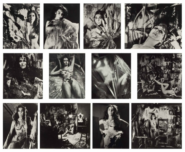 carolee_schneemann_eye_body_36_transformative_actions